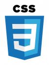 beach coders web bootcamp